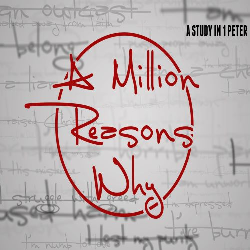 Episode 12 - A Million Reasons Why - Shine Image